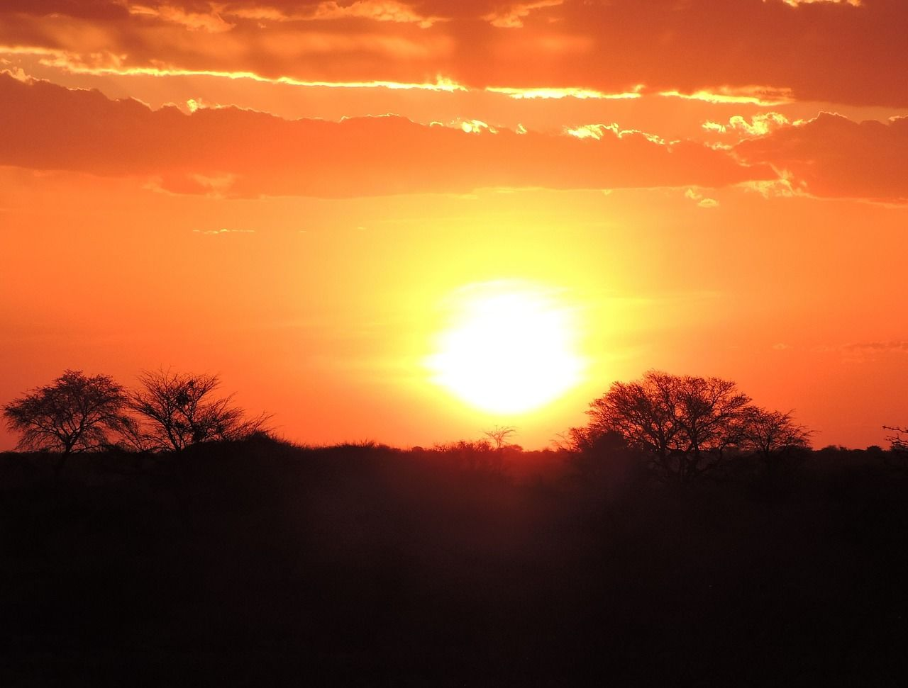 NABO Kalahari