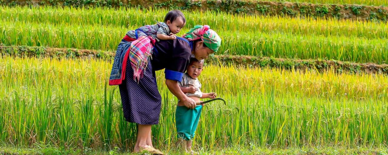 Vietnam ()