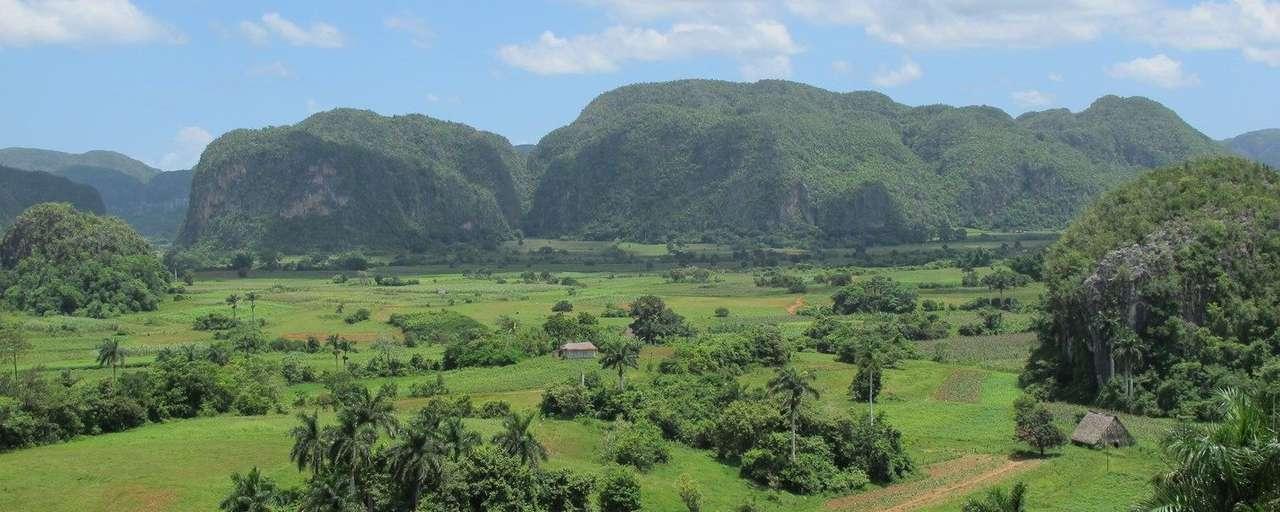 Groene vlakte met bergen op de achtergrond