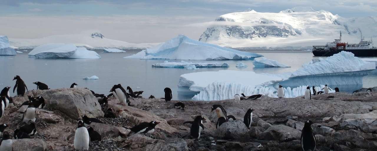 Rondreizen Antarctica